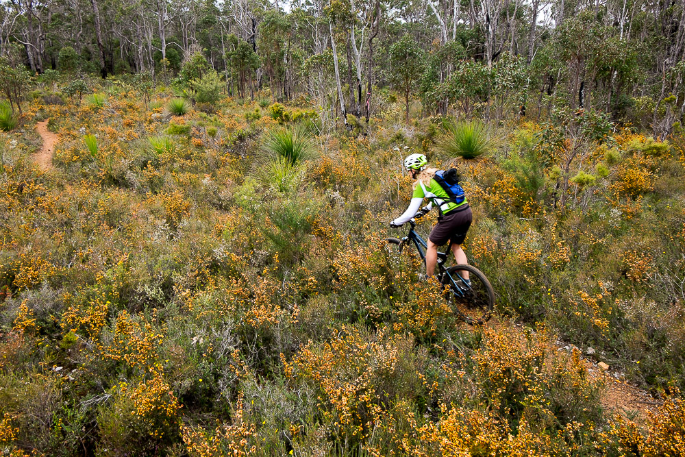 Find the Fun Mountain Biking at Carters Road Margaret River